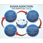 sugaraddictioncycle